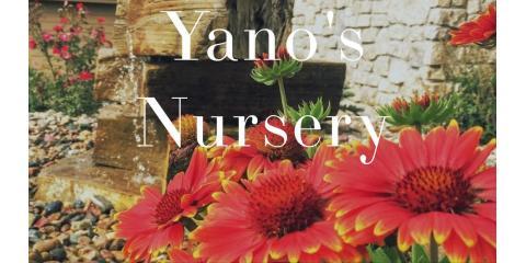Yano's Nursery