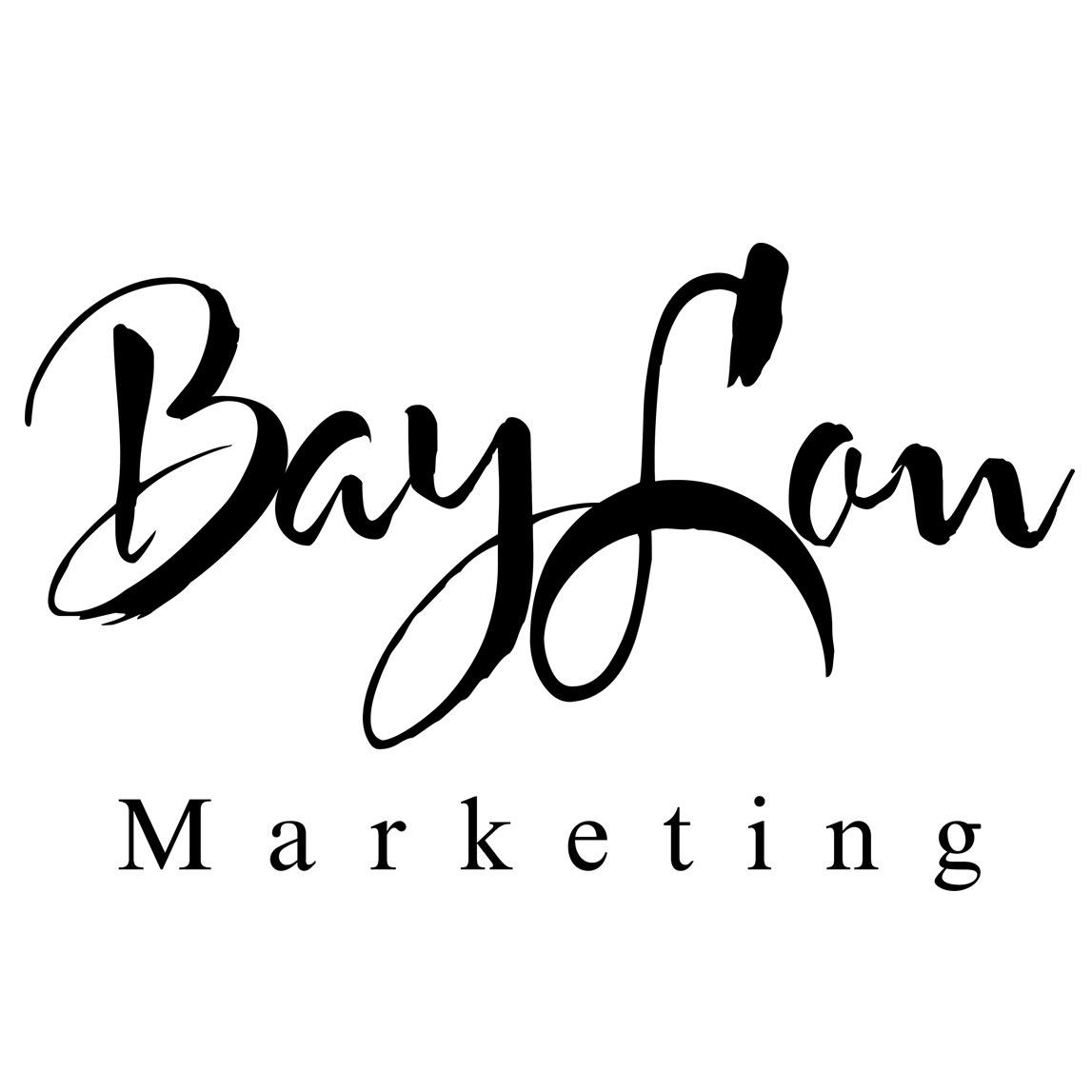 BayLon Marketing