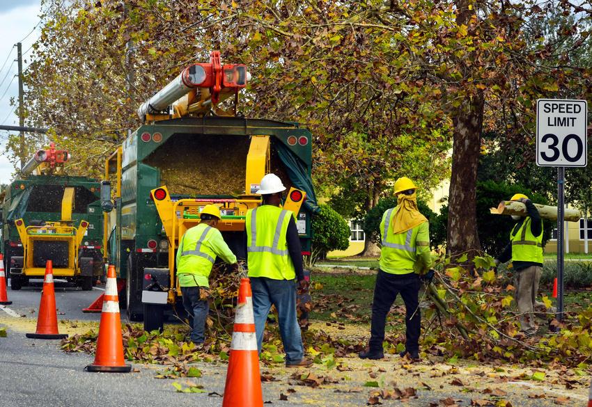 ROSS TREE SERVICE LLC image 4