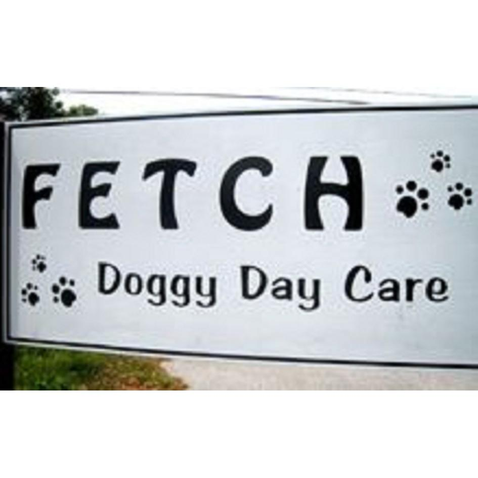 Fetch Doggy Day Care image 5