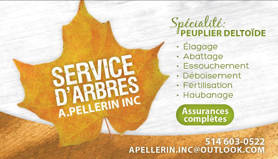 Service d'Arbres A Pellerin à Varennes