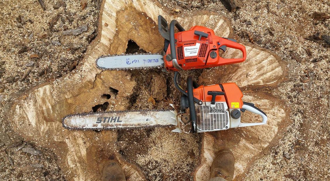 Woody Tree Service image 0