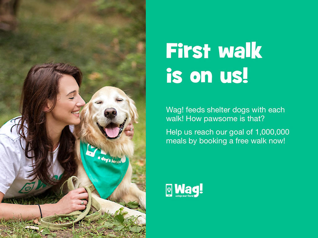 Wag! Dog Walking image 1