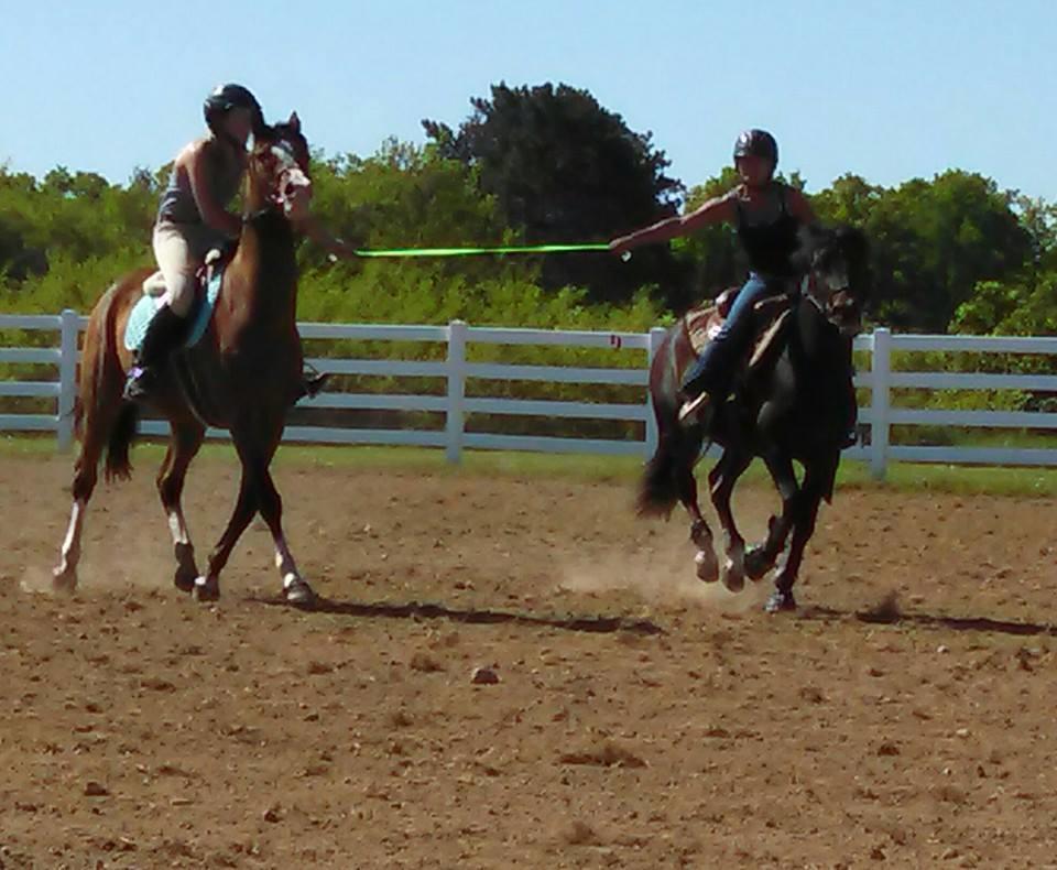 Pineridge Equestrian Center, LLC image 3
