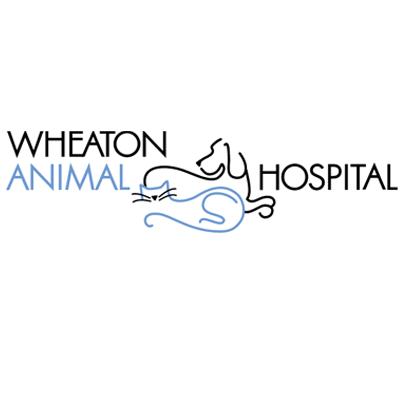 Wheaton Animal Hospital - Glen Ellyn, IL - Veterinarians