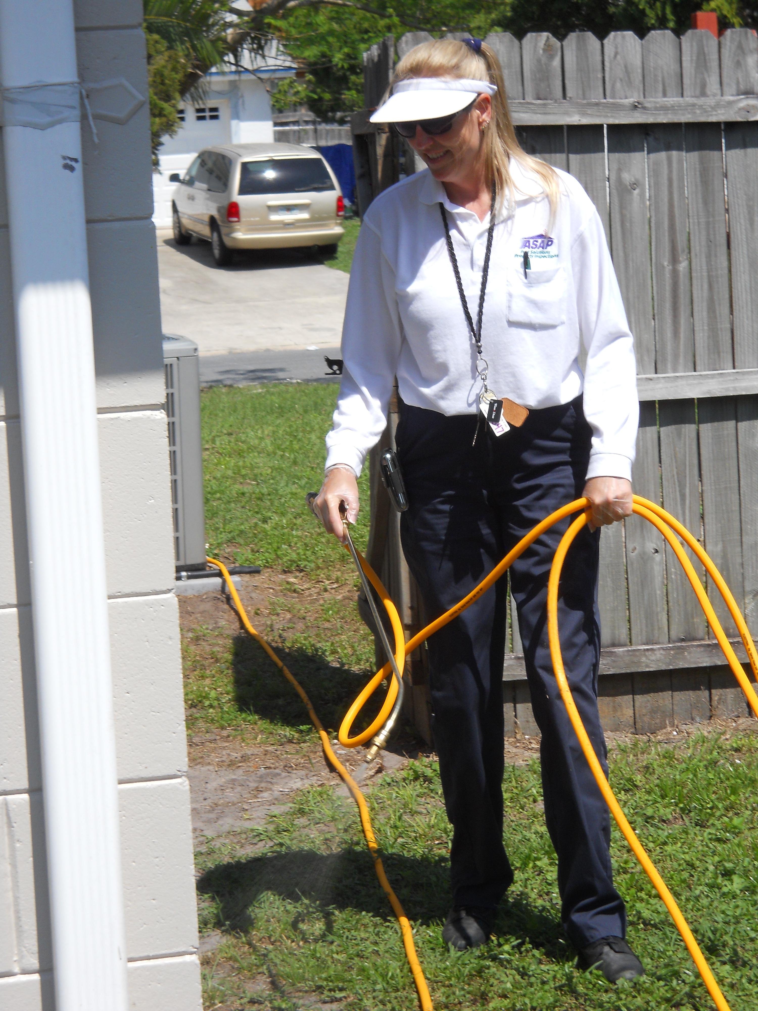 ASAP Pest Solutions, Inc image 10