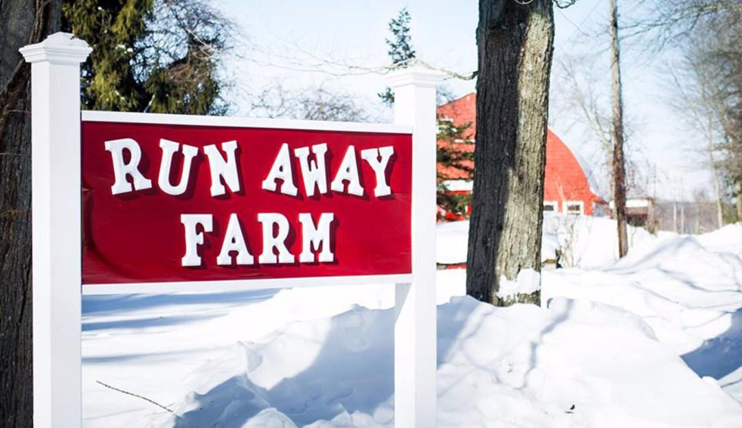 Run Away Farm image 1