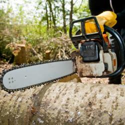 A&A Tree Service image 12