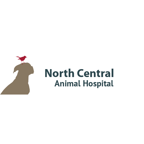 North Central Animal Hospital image 0