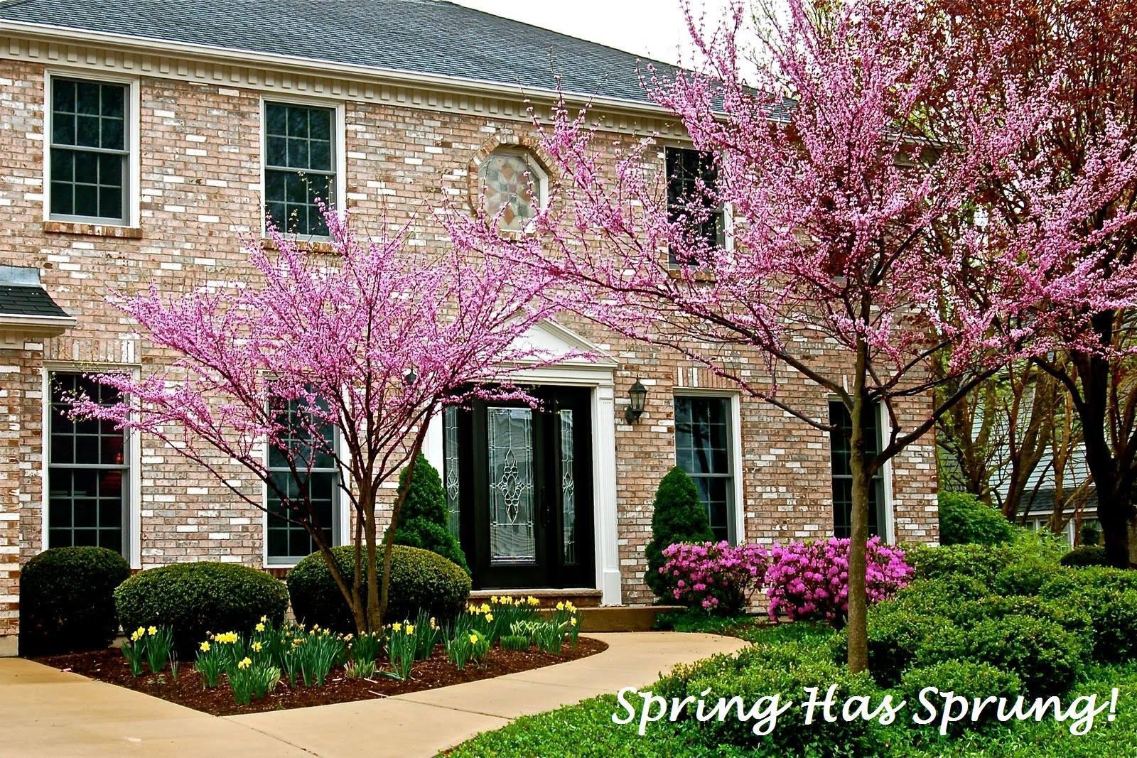 New Millennium Home Improvement Inc. image 2