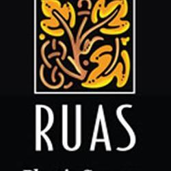 Ernesto J Ruas MD FACS