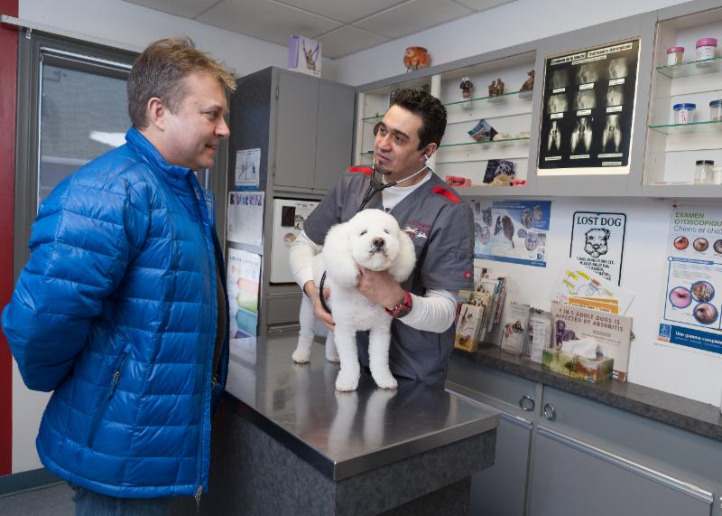 Hôpital Vétérinaire Cani-Felis Inc. à Saint-Hubert