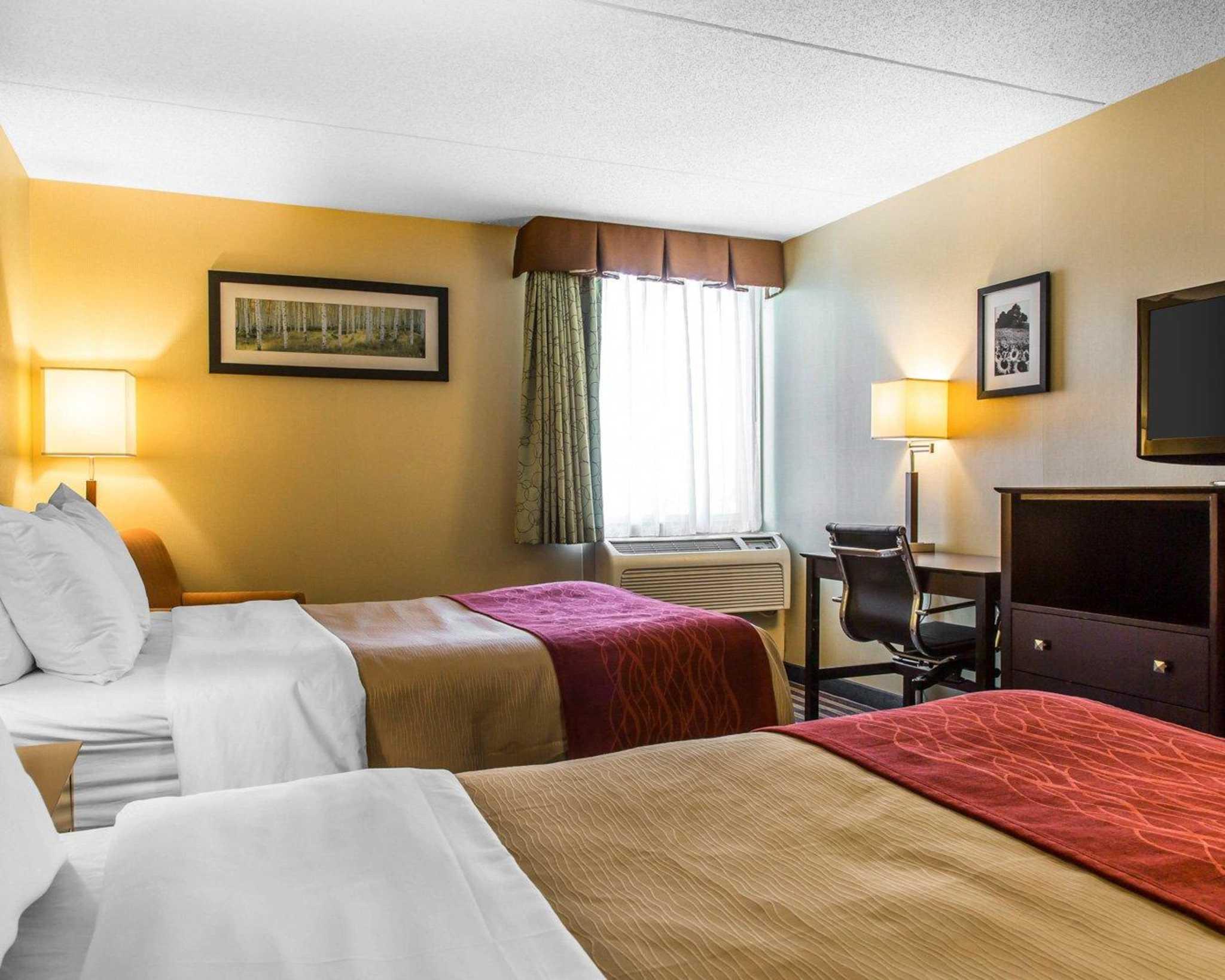 Comfort Inn & Suites East Hartford - Hartford image 10