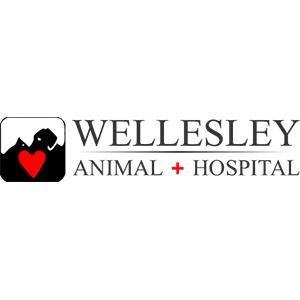 Wellesley Animal Hospital image 1