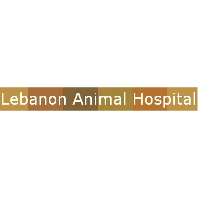 Lebanon Animal Hospital