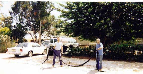 General Plumbing Service Inc image 1