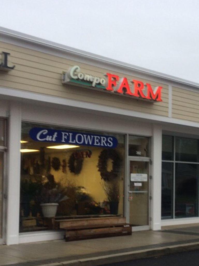 Compo Farm Flowers image 18