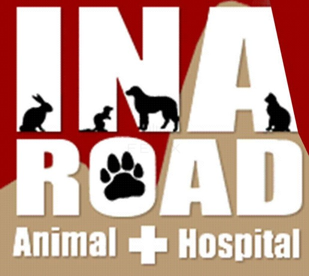 Ina Road Animal Hospital image 2