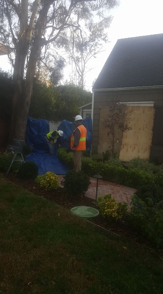 Great care is taken in prepping a job site for tree removal.
