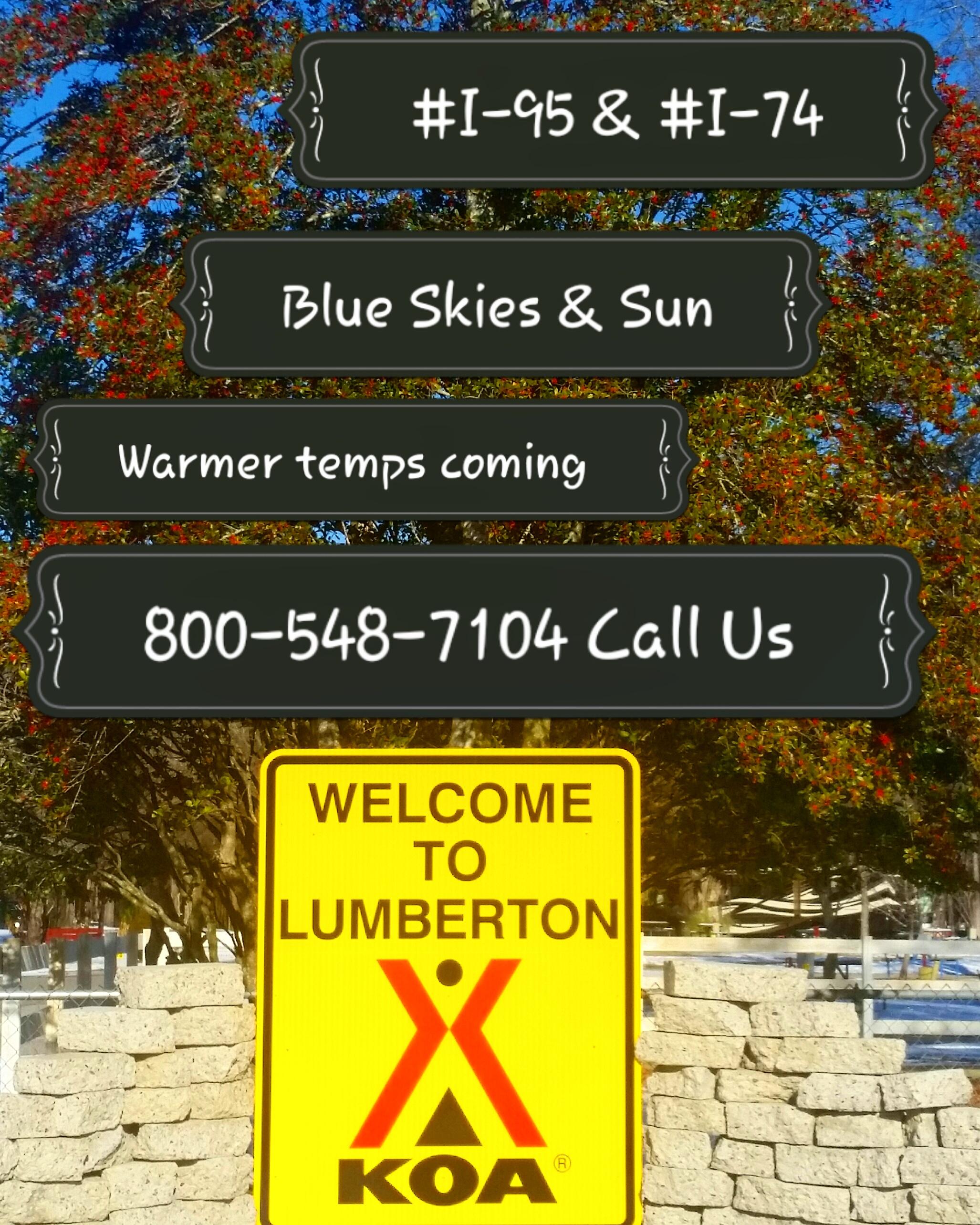 Lumberton / I-95 KOA Journey image 15