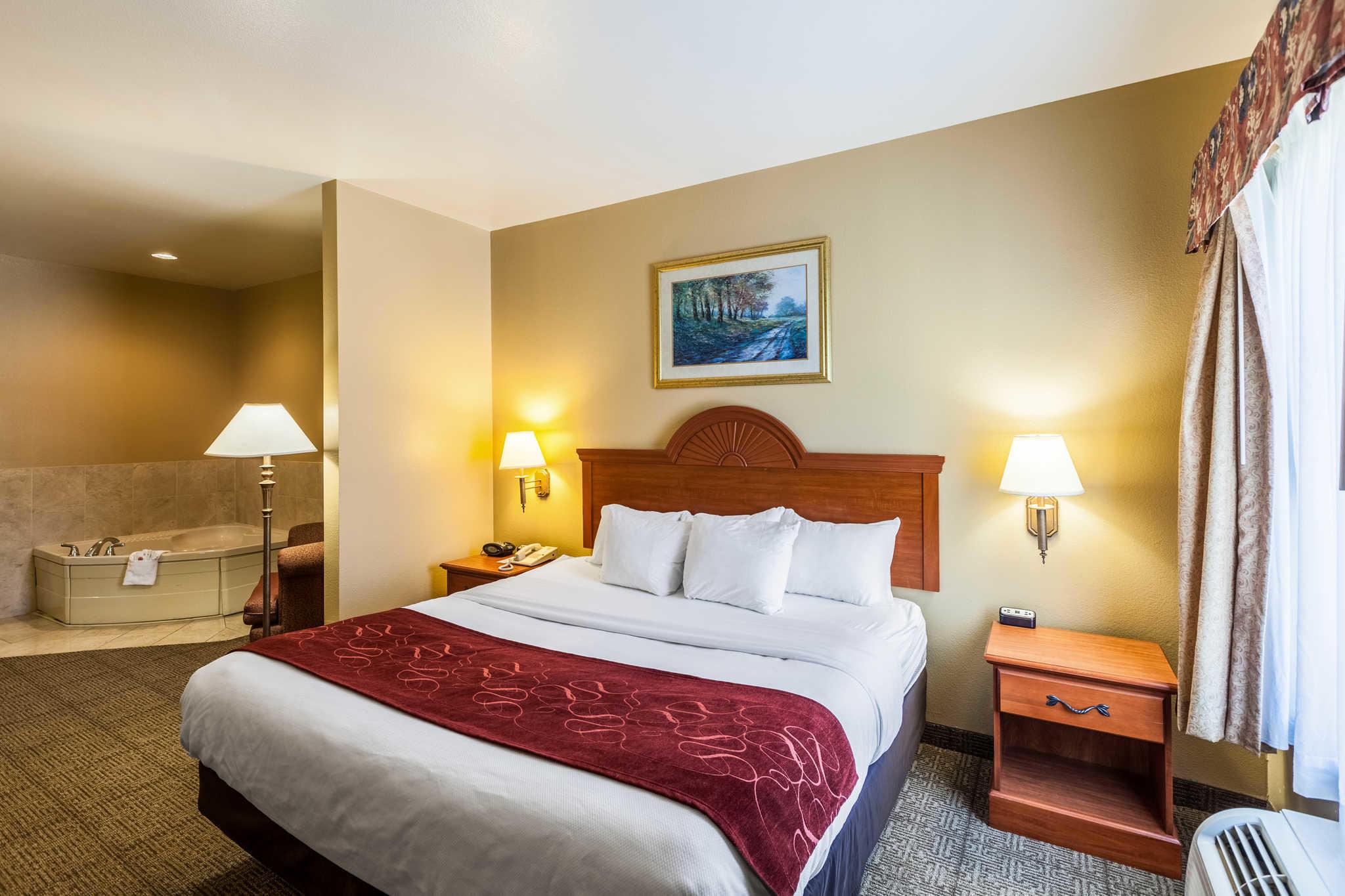 Comfort Suites Mesquite image 15