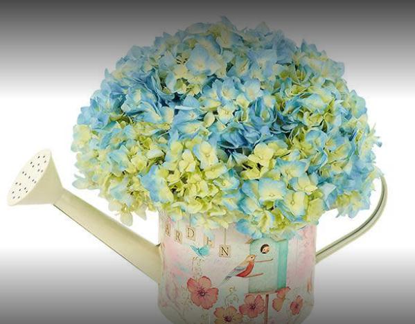 Petra Flowers image 1