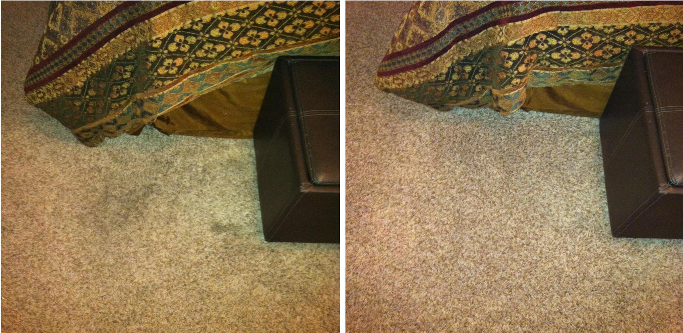 Eco Carpet Cleaning image 9
