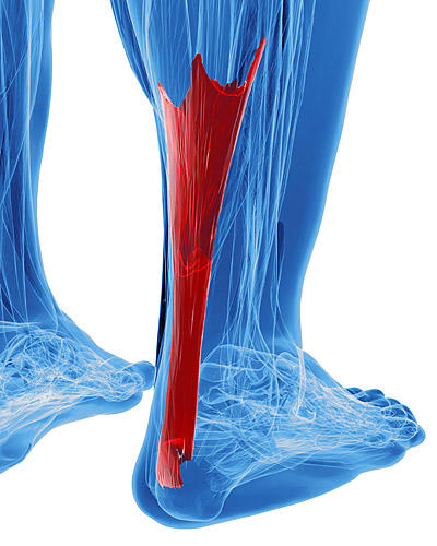 Innovative Foot & Ankle image 1