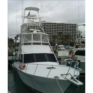 Charter Boat Shark Sport Fishing