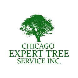 Chicago Expert Tree Service Inc