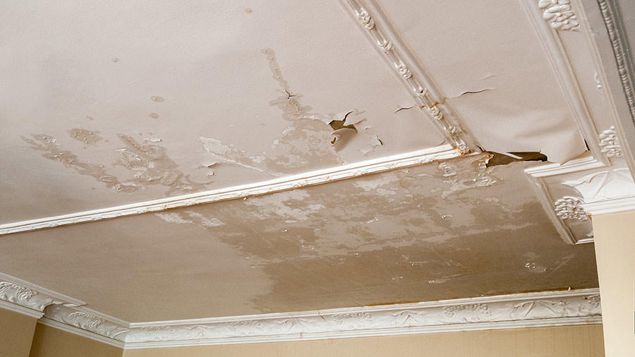 Armstrong Water Mold Cleanup & Restorations image 3