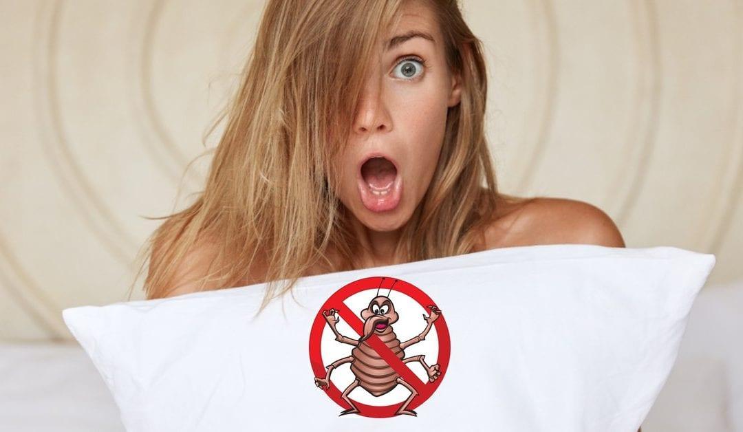 NJ Pest Control image 23