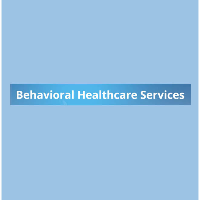 Behavioral Healthcare Services, nayari.carrero@bhsdab.com