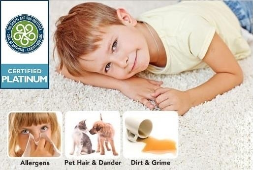 Super Steamers Carpet Cleaners image 6