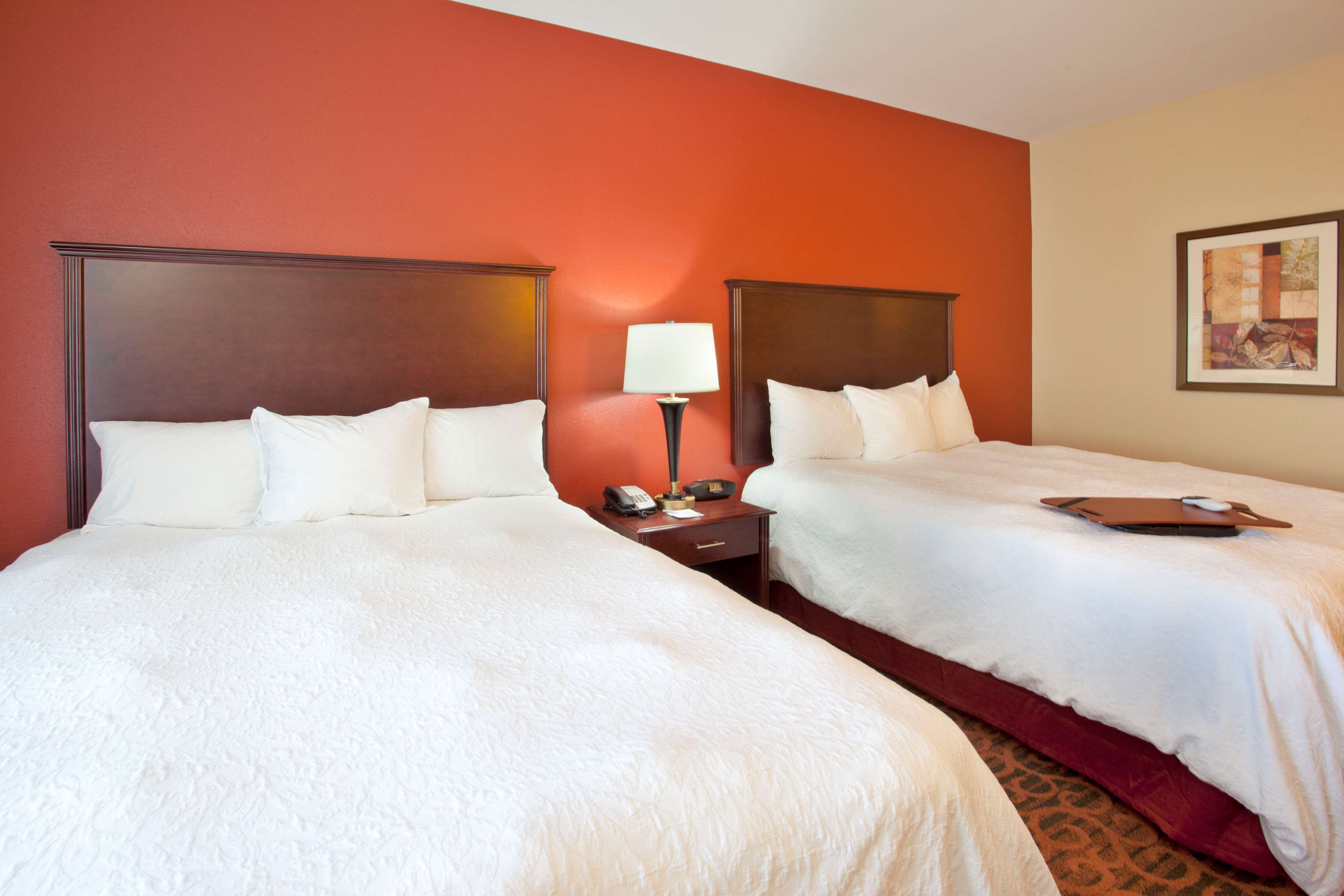 Hampton Inn & Suites Fort Worth-West-I-30 image 22