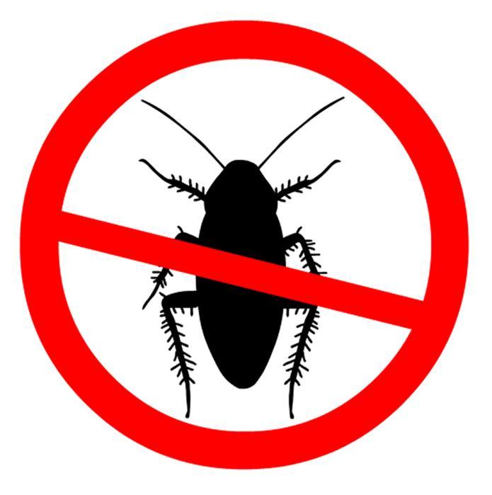 Combat Termite Specialist image 4