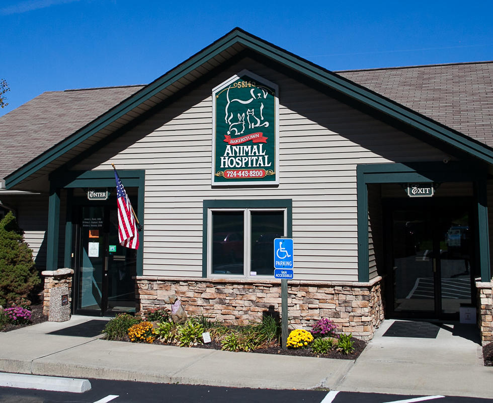 VCA Bakerstown Animal Hospital in Bakerstown, PA, photo #2
