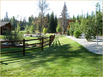 Quality Fencing & Construction image 3