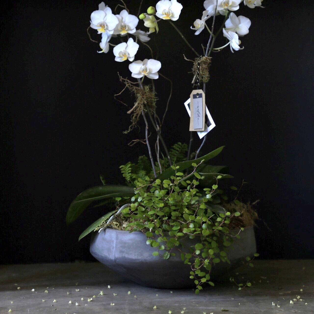 Wilder Floral Co. image 5