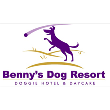 Best Large Dog Boarding In Plano Reviews