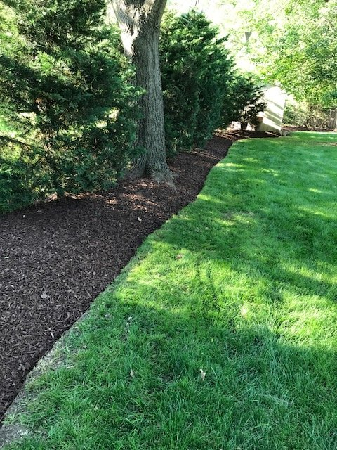 Rivera Brothers Landscaping image 3