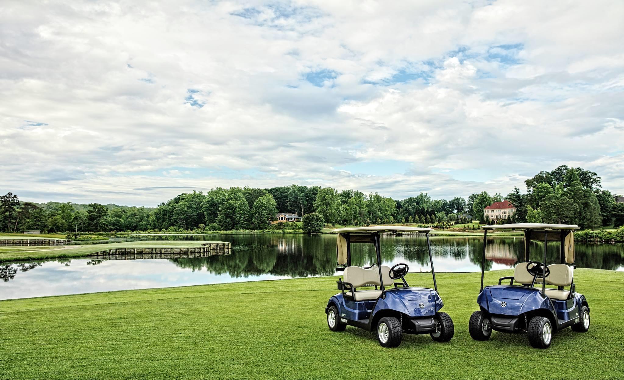 Golf Cars Plus image 3