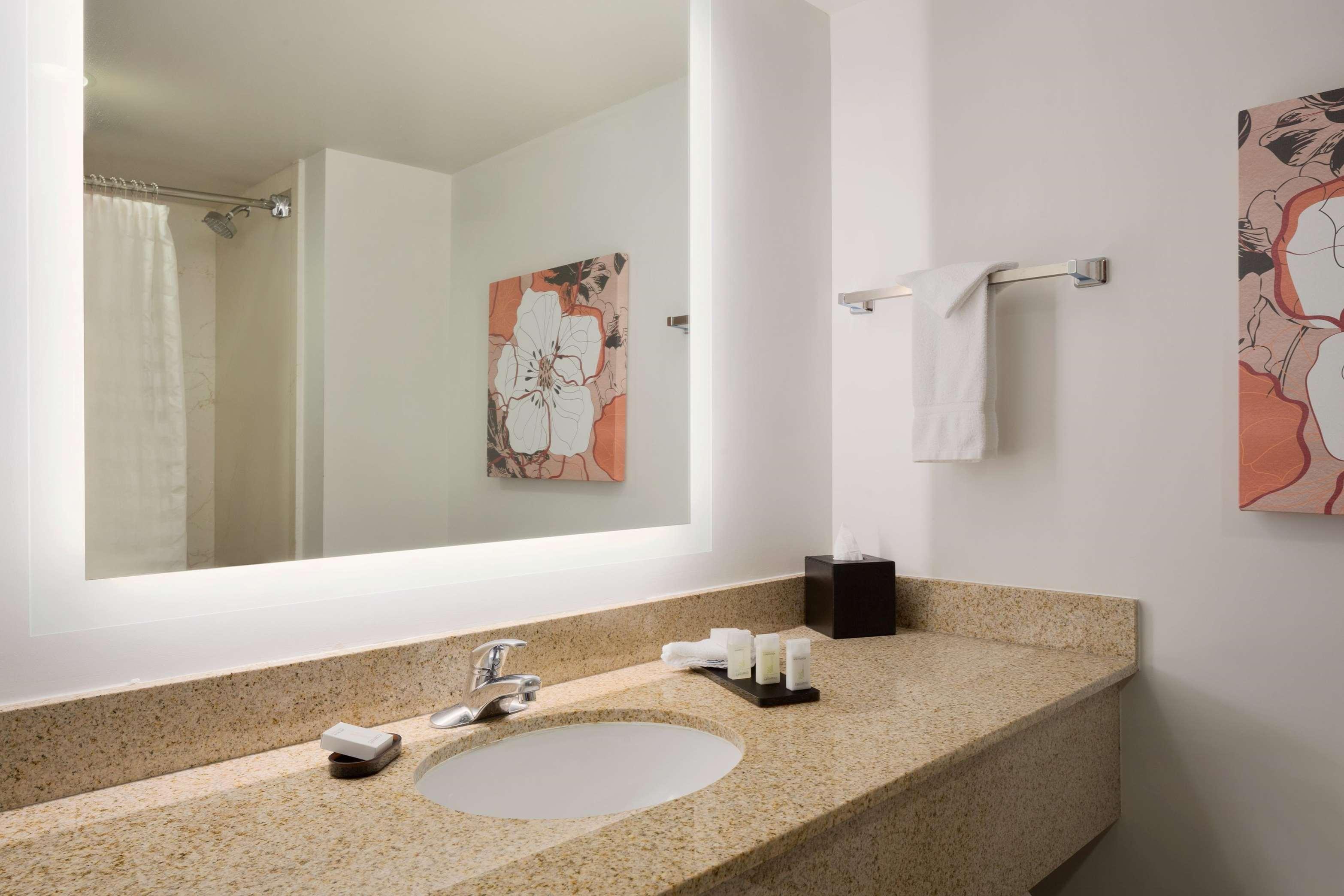 Embassy Suites by Hilton Denver International Airport image 28