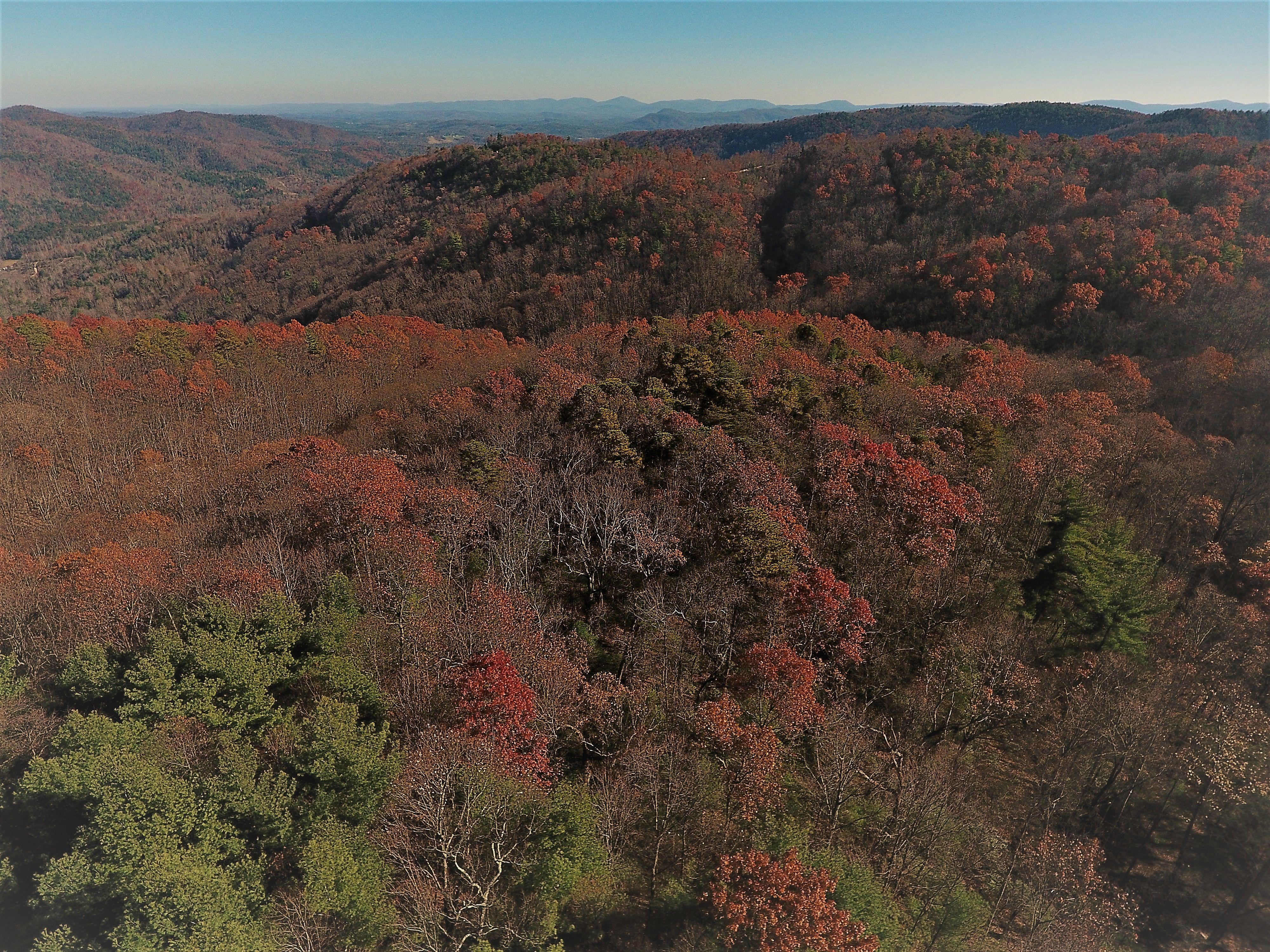 Mountain Property Brokerage image 19
