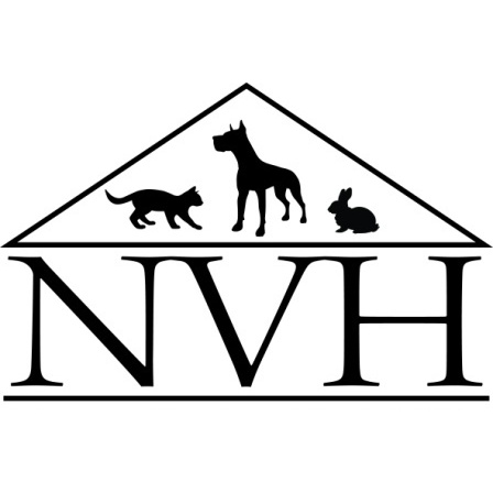 The Newton Vet image 4