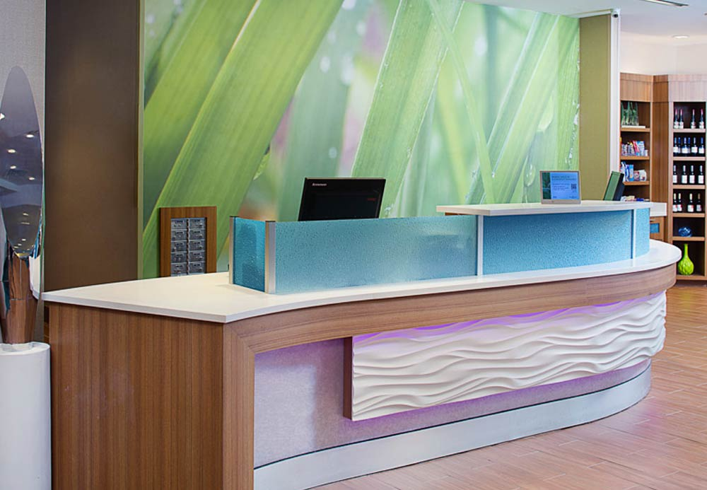 SpringHill Suites by Marriott Dallas Lewisville image 11