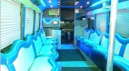 Elite Luxury Bus image 1