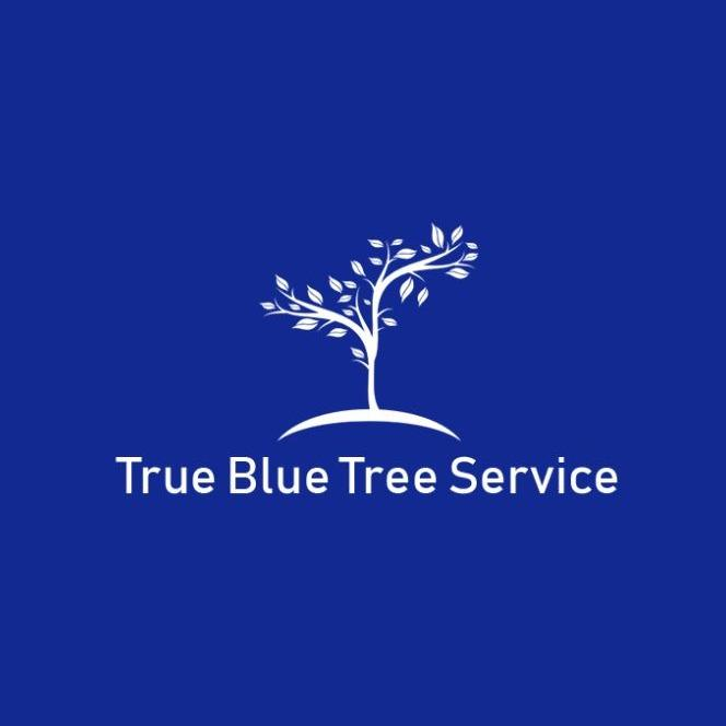 True Blue Tree Service