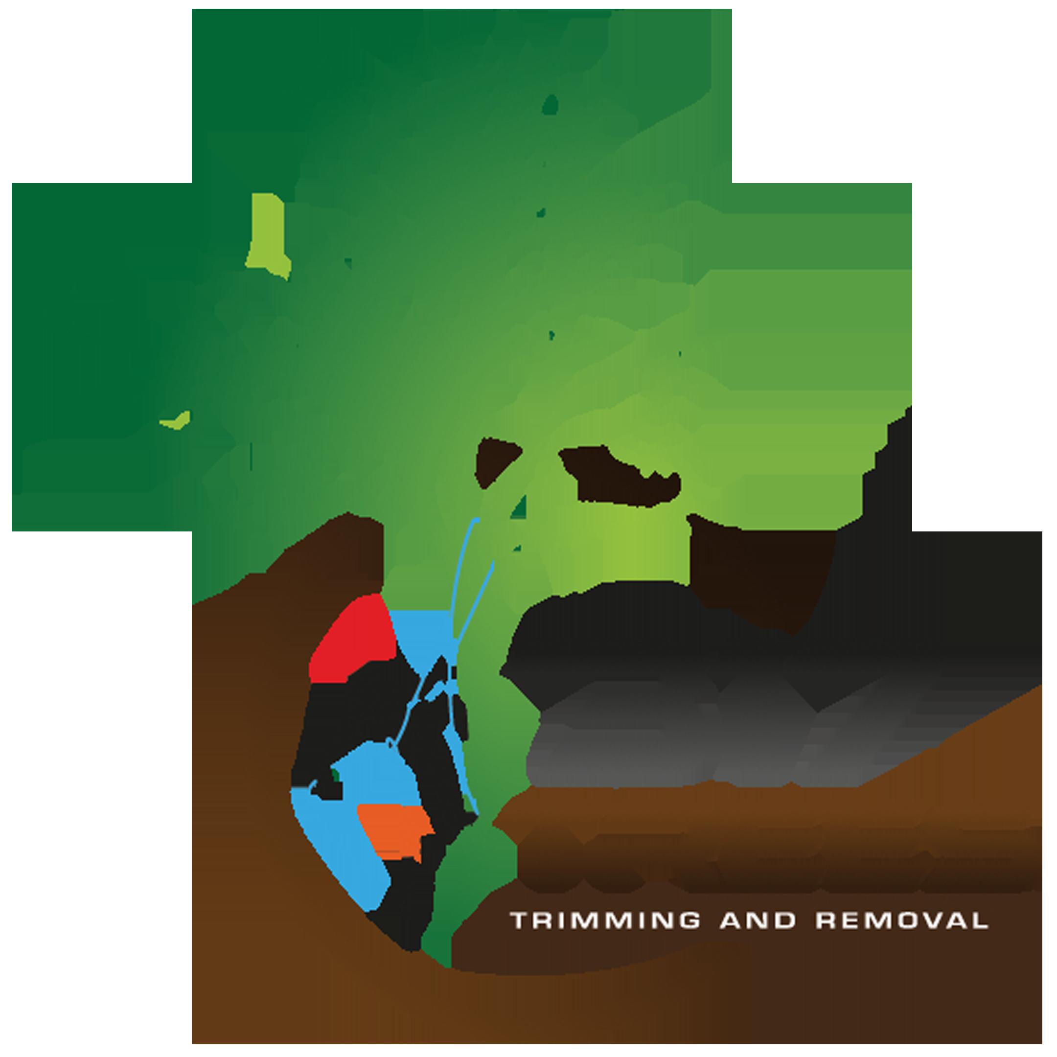 317 Trees