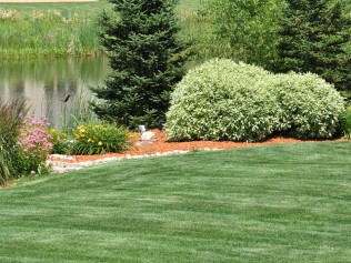 RA Robinson Landscaping image 1